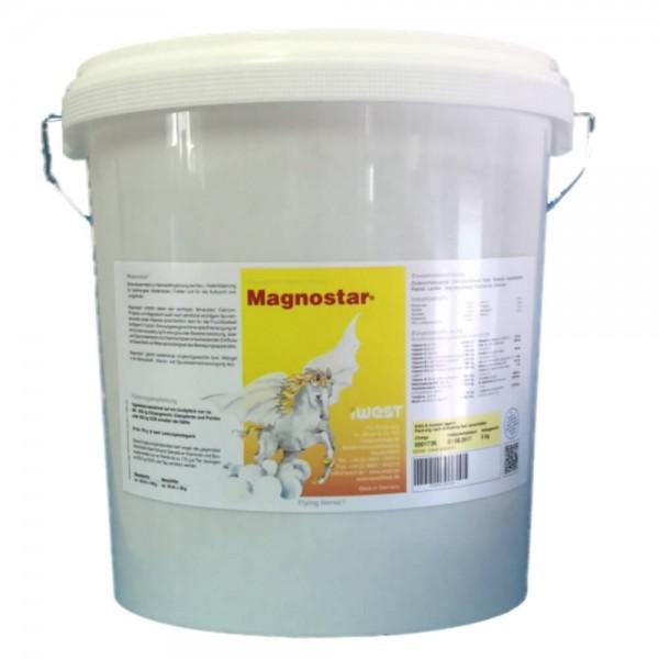 Magnostar