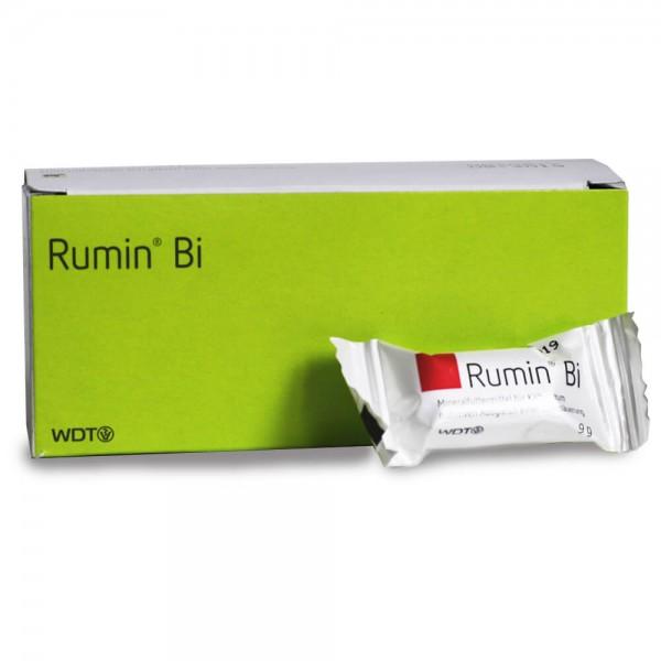 Rumin Bi