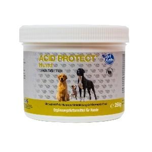 Nutri Labs Acid Protect Hund