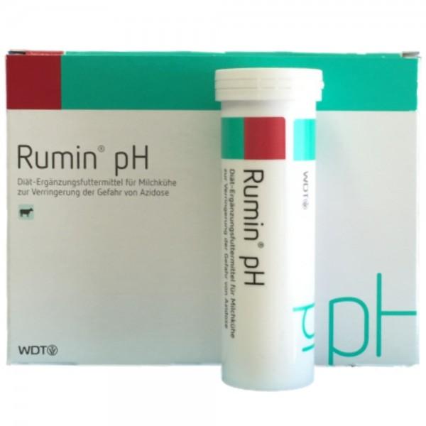 Rumin pH