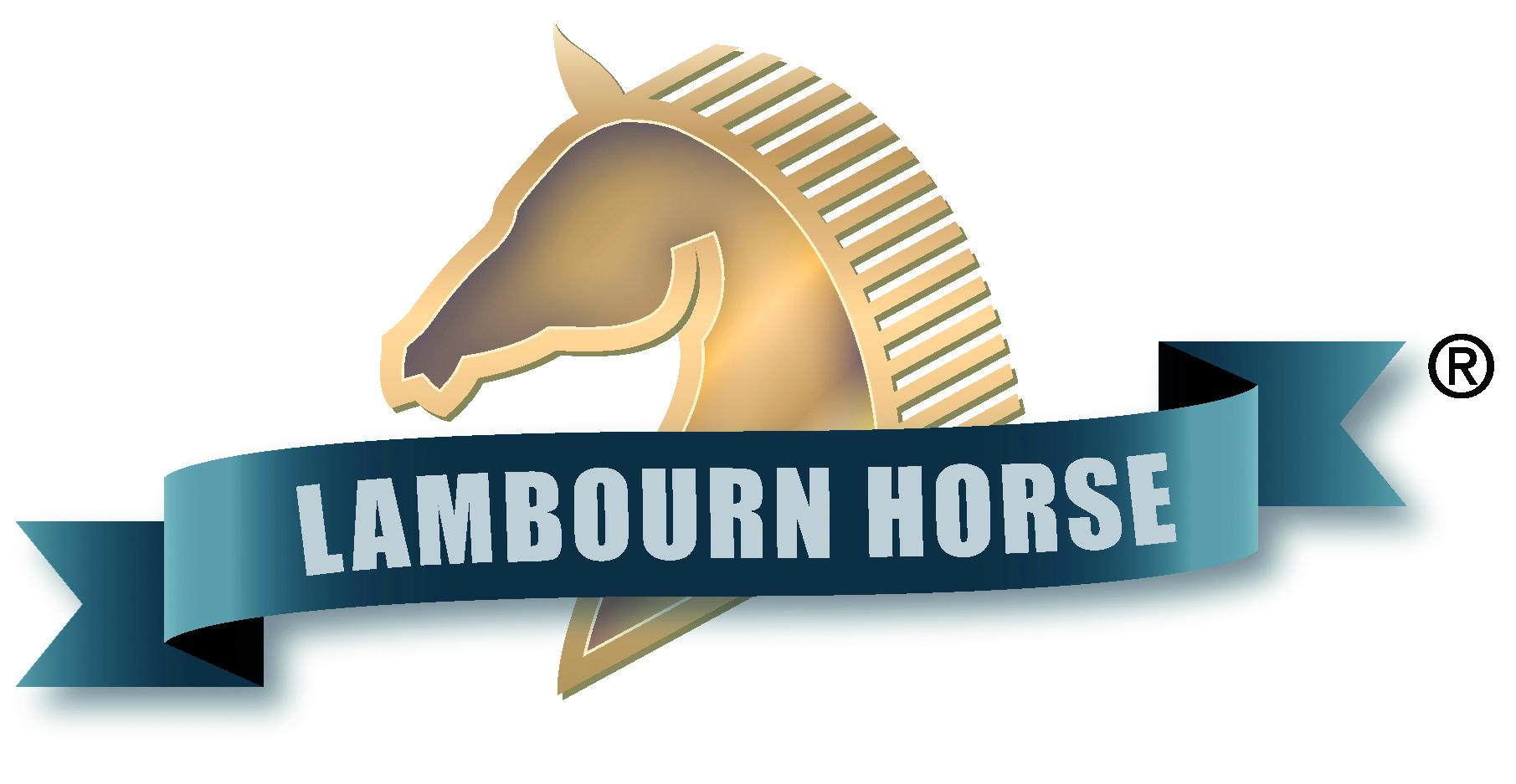 Lambourn-Horse