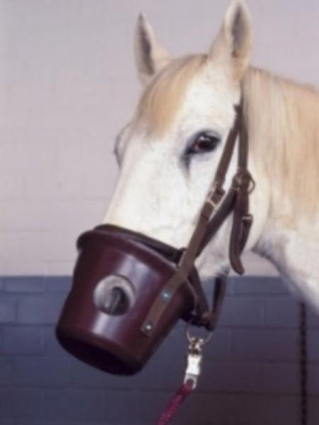 Maulkorb Pferd