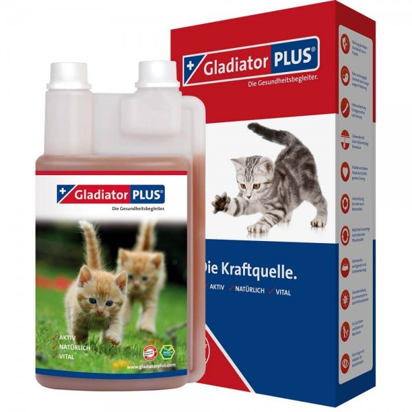 Gladiator Plus Katze