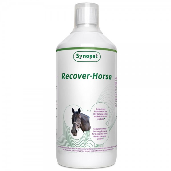 Recover Horse