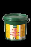Beta carotin Knoblauch