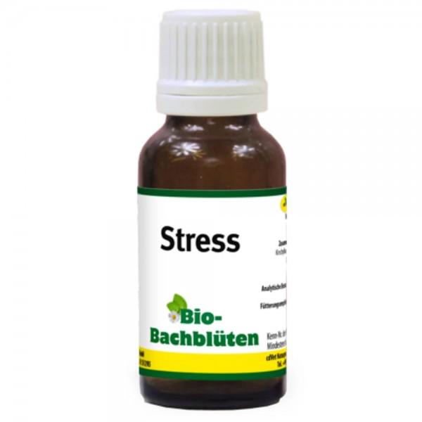 cdVet Bachblüten Stress