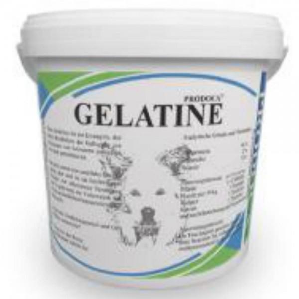Prodoca Gelatine Pulver Hund
