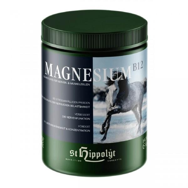 Magnesium B12 1kg
