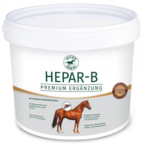 Atcom Hepar-B