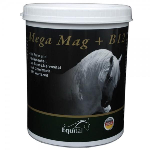 Equital Mega Mag B12 Pulver 1kg
