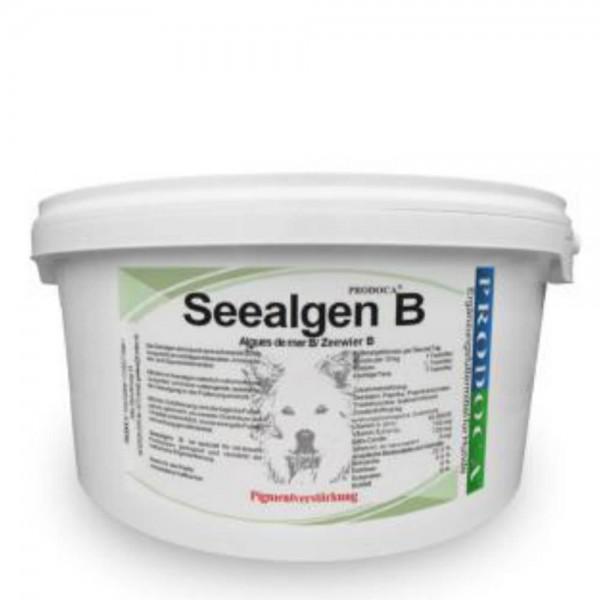 Prodoca Seealgen B Hund