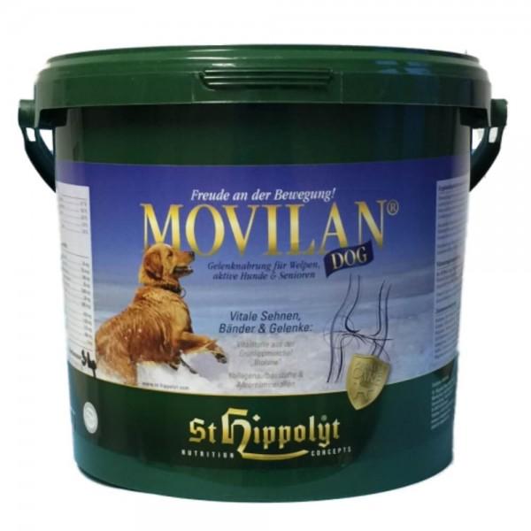 Movilan Dog
