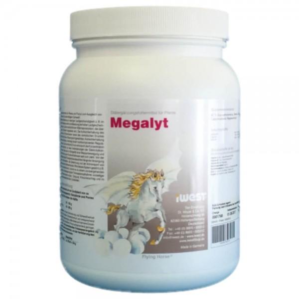 Megalyt
