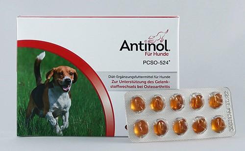 Antinol 60 Kaps
