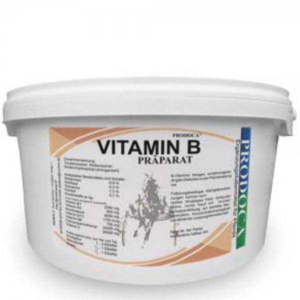 Prodoca Vitamin B Präparat Pferd