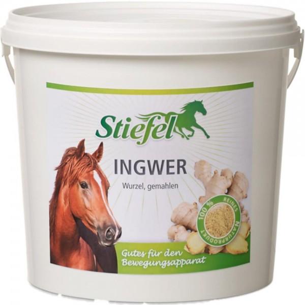 Stiefel Ingwer