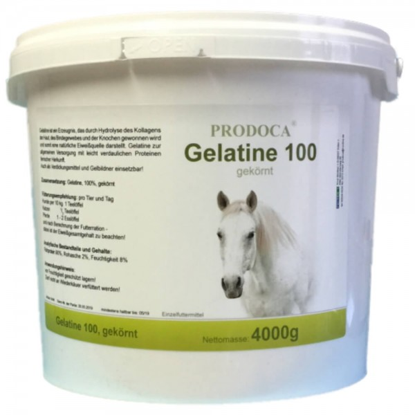 Prodoca Gelatine Pferd