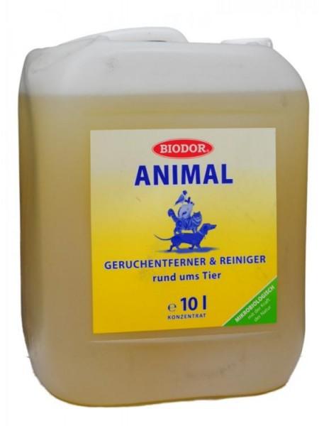 Biodor animal
