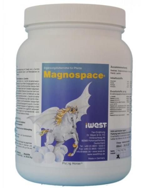 Magnospace