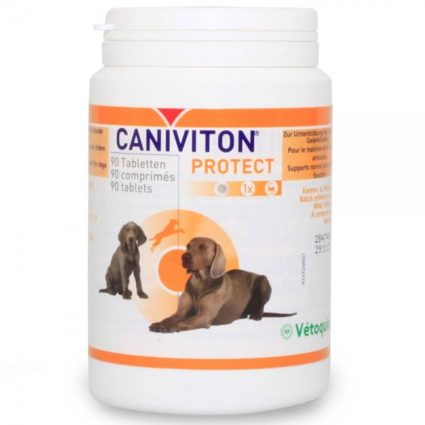 Caniviton Protect 90Tab