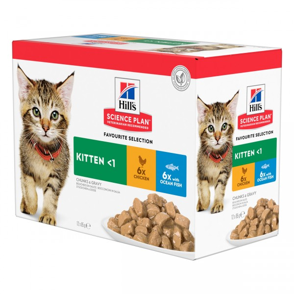 Hills Science Plan Katze Kitten Huhn