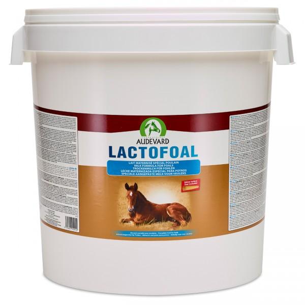 Audevard Lactofoal 14kg