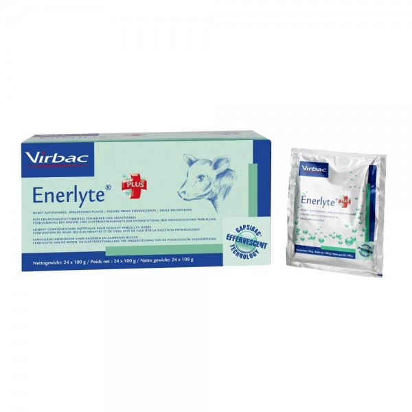 Enerlyte plus