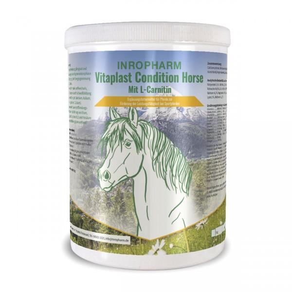 Vitaplast condition horse
