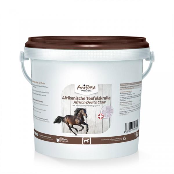 AniForte Pferd Afrikanische Teufelskralle 1kg