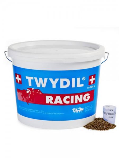 Twydil Rennstall Racing