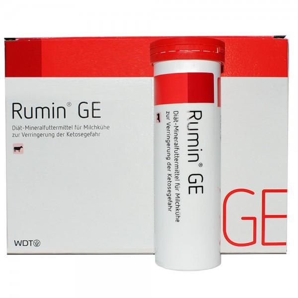 Rumin GE