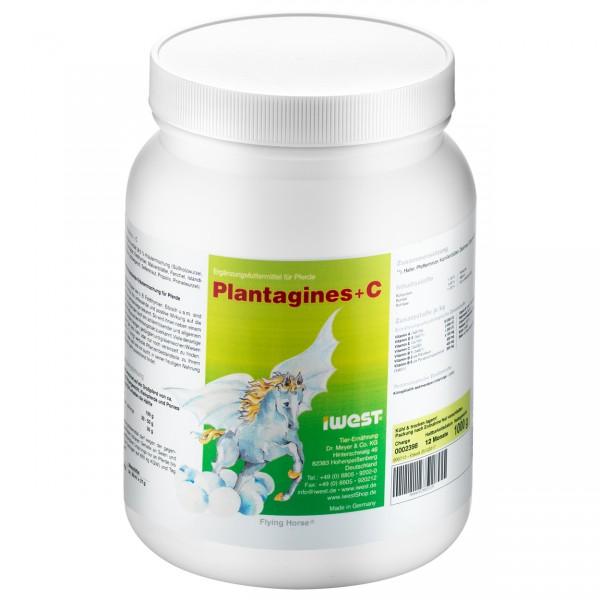 Plantagines + C
