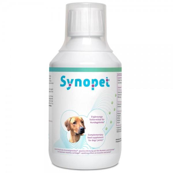 Synopet Dog