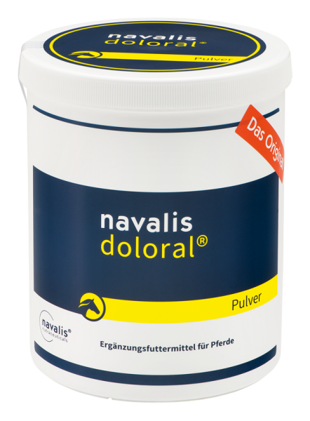 Doloral Horse
