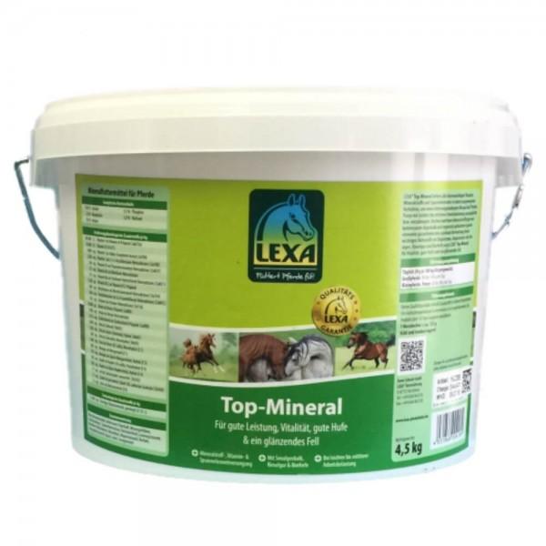 Lexa Top Mineral